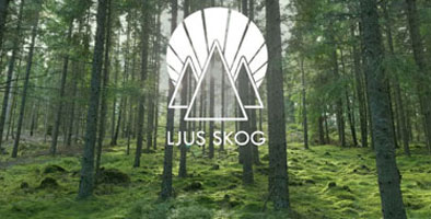 Ett nytt ljus i skogen