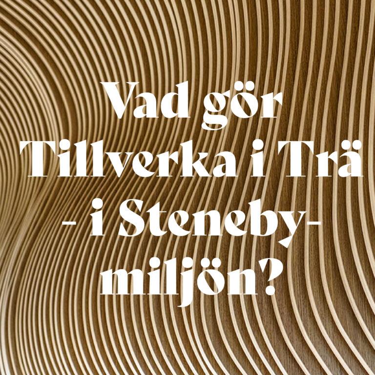 Read more about the article Vad gör Tillverka i Trä – i Stenebymiljön?