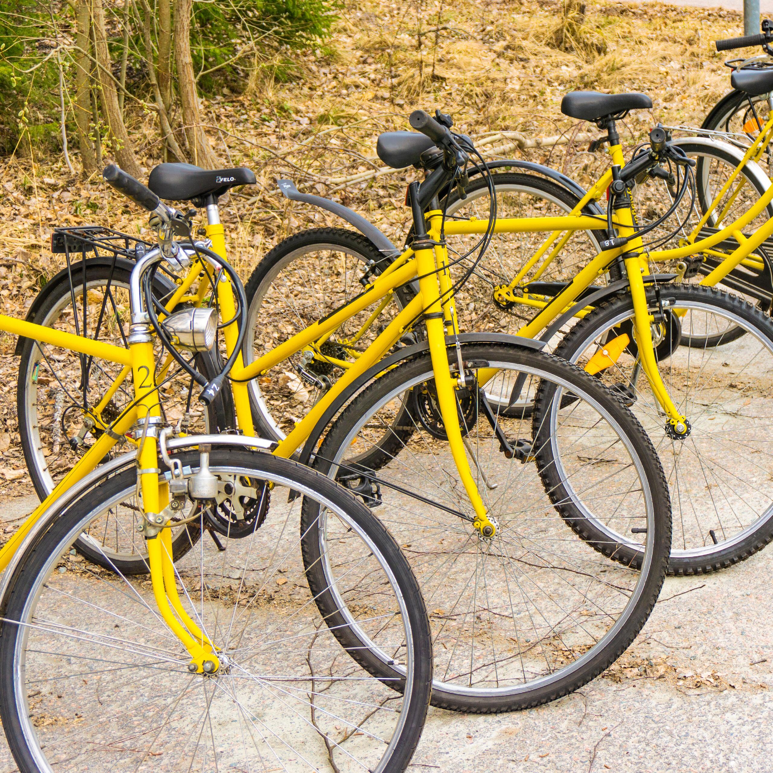 cykla_gul_2021